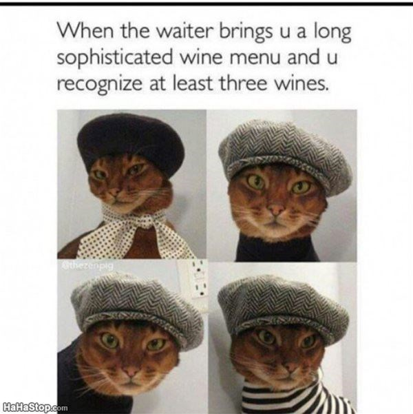 Headgear - When the waiter brings u a long sophisticated wine menu and u recognize at least three wines. therenpig HaHaStop.com