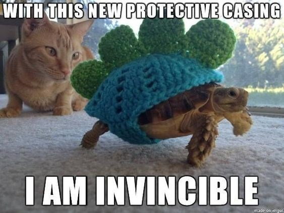 turtles meme - Tortoise - WITH THIS NEW PROTECTIVE CASING IAM INVINCIBLE made on mgun