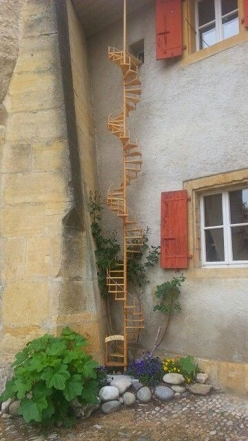 cat stairs - Wall - Silete
