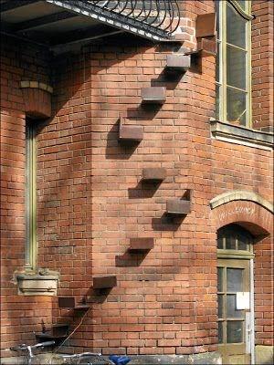 cat stairs - Brickwork