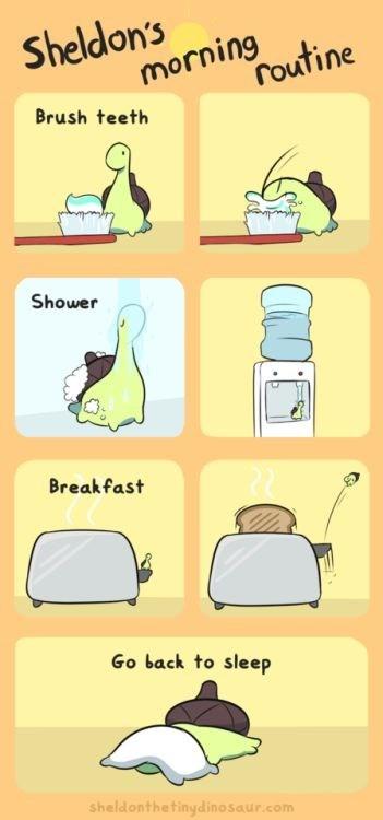 Yellow - Sheldon's morning Toutine Brush teeth Shower Breakfast Go back to sleep sheldonthetinydinosaur.com
