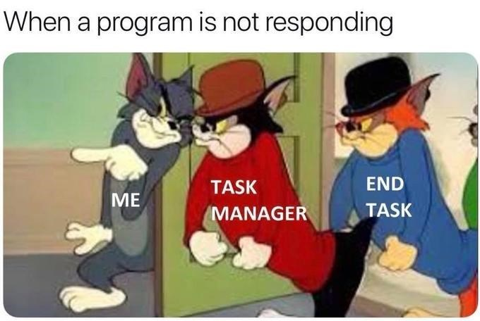 funny tom and jerry goons meme about task manager.