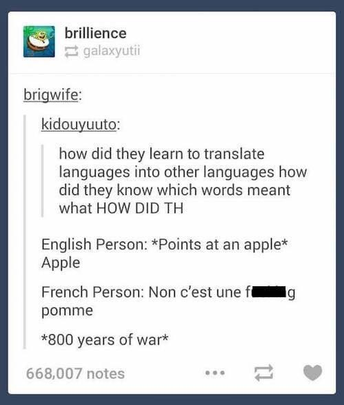 Text - brillience galaxyutii brigwife: kidouyuuto: how did they learn to translate languages into other languages how did they know which words meant what HOW DID TH English Person: *Points at an apple* Apple French Person: Non c'est une fl g pomme *800 years of war* 668,007 notes