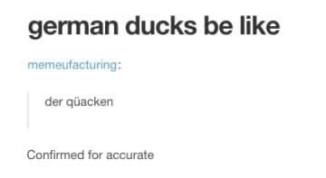 Text - german ducks be like memeufacturing: der qüacken Confirmed for accurate