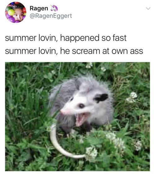 depressing meme - Canidae - Ragen @RagenEggert summer lovin, happened so fast summer lovin, he scream at own ass