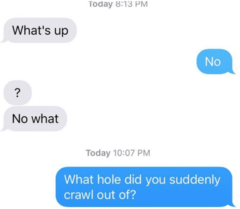 Text - Today 8:13 PM What's up No ? No what Today 10:07 PM hat hole did you suddenly crawl out of?