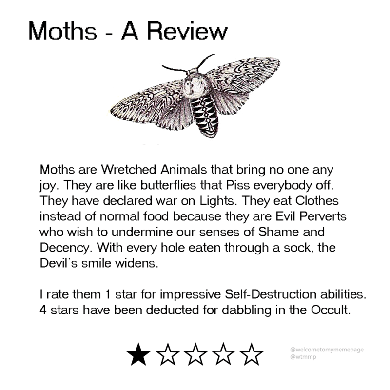 animal review - Text - Moths - A Review Moths are Wretched Animals that bring no one any joy. They are like butterflies that Piss everybody off. They have declared war on Lights. They eat Clothes instead of normal food because they are Evil Perverts who wish to undermine our senses of Shame and Decency. With every hole eaten through a sock, the Devil's smile widens. rate them 1 star for impressive Self-Destruction abilities.