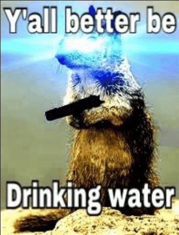 water meme - Organism - Yall better be Drinking water