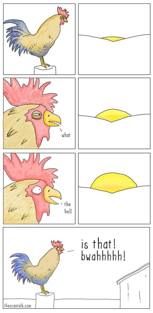 Comic about a rooster seeing the sun and freaking out by crowing