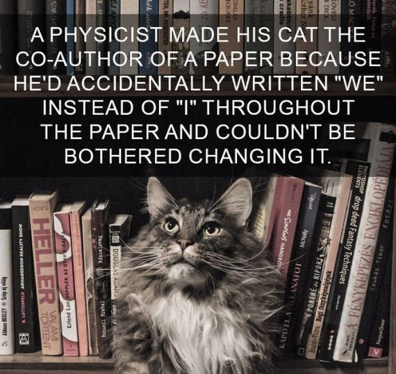 "cat fact - Cat - A PHYSICIST MADE HIS CAT THE CO-AUTHOR OF A PAPER BECAUSE HE'D ACCIDENTALLY WRITTEN ""WE"" INSTEAD OF ""I"" THROUGHOUT THE PAPER AND COULDN'T BE BOTHERED CHANGING IT 2930 sw erak dmt PHOTOSHOP drop dead Fantasy Techniques OMA A BENYKÉPEZÉS ENCIKLOPEDIÁJA AgNDw IOIVNI VTIV PORIRE RIPORJ SINPss HANDBOD ksz aebe OML EQUA TEX, M ek itDOUGLAS AUAMS zY 4001 puau3 VALAM TORTENT HELLER MONE AITWIe HOOdsOY euIO1 Bega n dasAN"