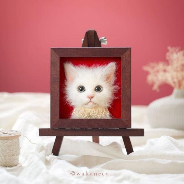 Cat - wakuneco