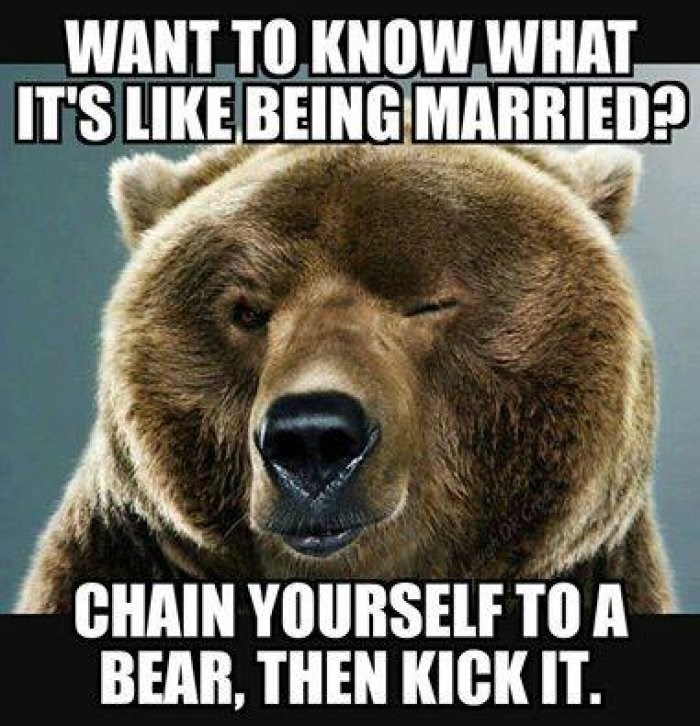 Bear - WANT TO KNOW WHAT IT'S LIKE BEING MARRIED? CHAIN YOURSELF TO A BEAR, THEN KICK IT.
