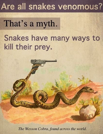 meme about snakes having various ways to kill their prey with illustration of snake holding a rifle