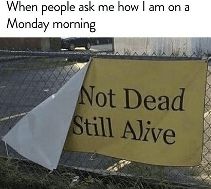 "Sign that reads, ""Not dead, still alive,"" with the caption, ""When people ask me how I am on a Monday morning"""