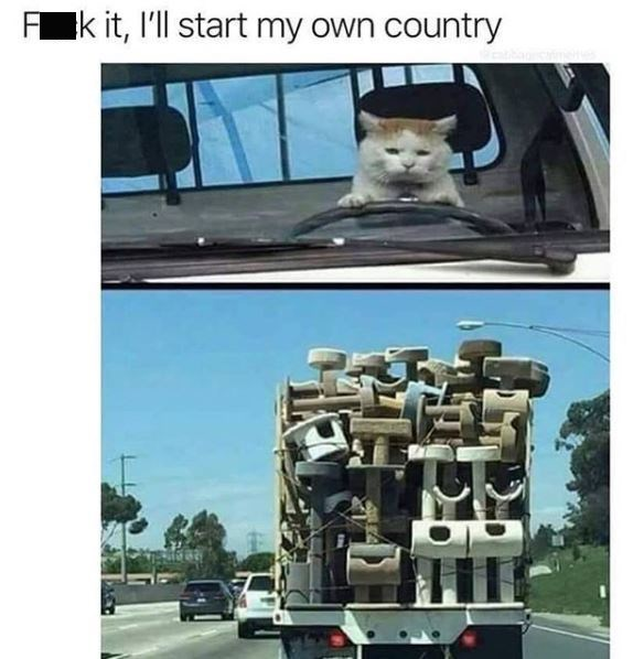 cat meme - Transport - F k it, I'll start my own country
