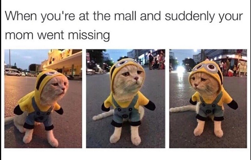 Organism - |When you're at the mall and suddenly your mom went missing