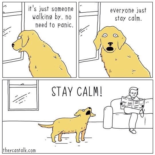 Comic of a dog watching out the window while seeing someone walk by and howling at everyone to remain calm