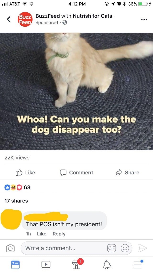 old people fail - Cat - O 36% 4:12 PM ll AT&T Buzz Buzz Feed with Nutrish for Cats. FeeD Sponsored Whoa! Can you make the dog disappear too? 22K Views Like Comment Share 63 17 shares That POS isn't my president! 1h Like Reply Write a comment... GIF