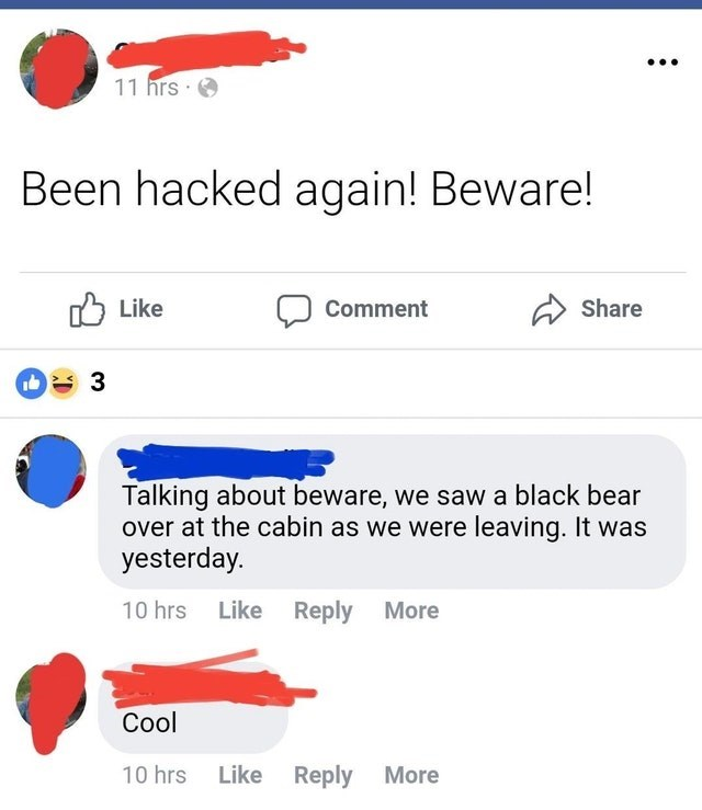 old people fail - Text - 11 hrs Been hacked again! Beware! Like Share Comment 3 Talking about beware, we saw a black bear over at the cabin as we were leaving. It was yesterday 10 hrs Like Reply More Cool 10 hrs Like Reply More