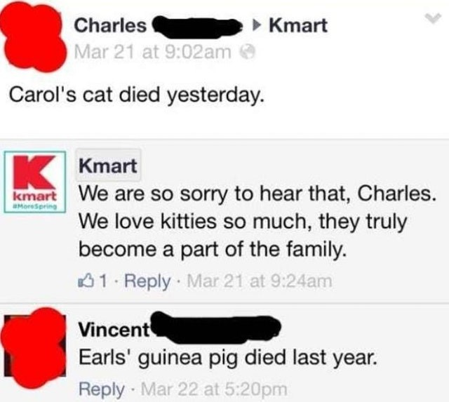 old people fail - Text - Charles Kmart Mar 21 at 9:02am Carol's cat died yesterday. Kmart kmart We are so sorry to hear that, Charles. We love kitties so much, they truly become a part of the family. 1 Reply Mar 21 at 9:24am aMoreSpring Vincent Earls' guinea pig died last year. Reply Mar 22 at 5:20pm