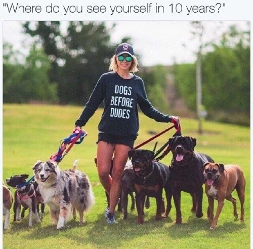 "Dog - ""Where do you see yourself in 10 years?"" DOGS BEFORE DUDES"