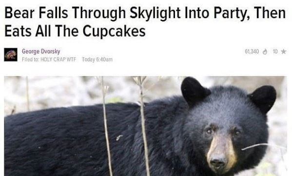 Bear - Bear Falls Through Skylight Into Party, Then Eats All The Cupcakes 61,34010 George Dvorsky Filed to: HOLY CRAP WTF Today 6:40am