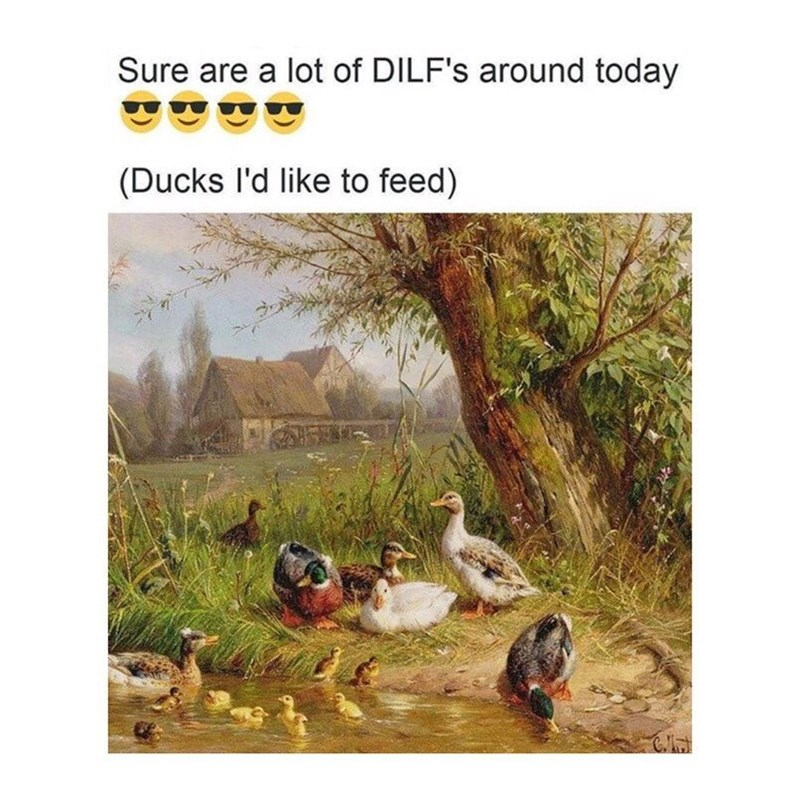 Funny meme about dilfs, ducks i'd like to feed.