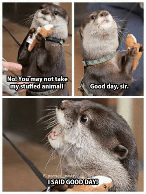 Mammal - No! Youmay not take mystuffed animal! Good day, sir. Oparus mur ISAID GOOD DAY!
