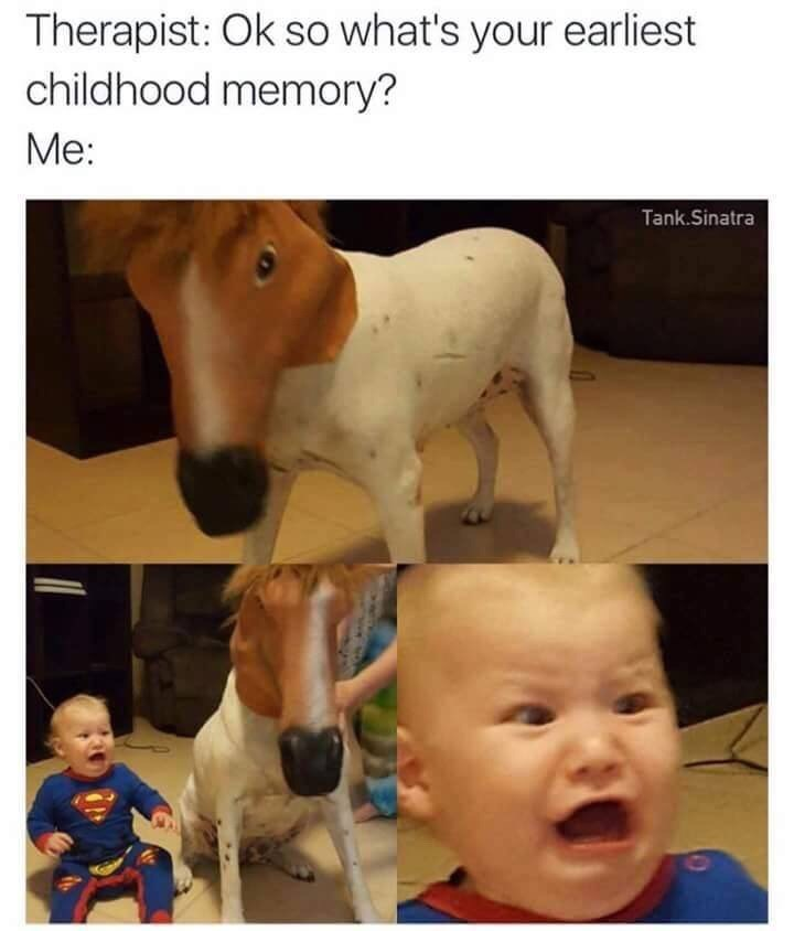 """Pic of a baby being terrified by a dog wearing a horse mask, with the caption, """"Therapist: 'Okay so what's your earliest childhood memory?' Me:..."""""""