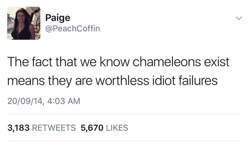 Wednesday meme about Chameleons not doing a very good job if we know they exist