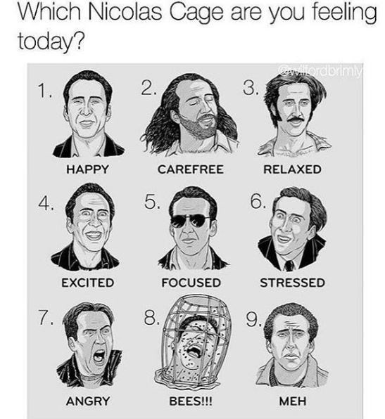 Face - Which Nicolas Cage are you feeling today? Wllordbrimly 3. 2. 1 НАРPY CAREFREE RELAXED 6. 5. 4. EXCITED FOCUSED STRESSED 8 7. 9. ANGRY BEES!!! МЕН