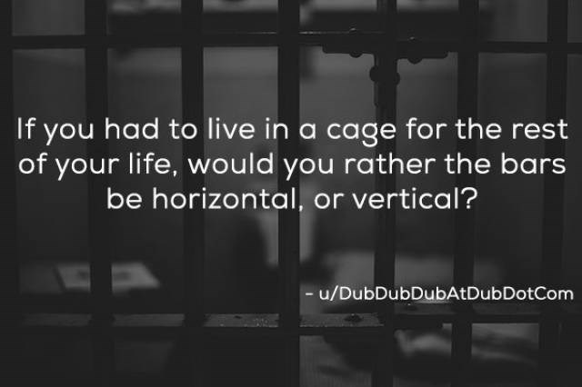Text - If you had to live in a cage for the rest of your life, would you rather the bars be horizontal, or vertical? - u/DubDubDubAtDubDotCom