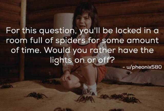 Text - For this question, you'll be locked in a room full of spiders for some amount of time. Would you rather have the lights on on off? u/pheonix580