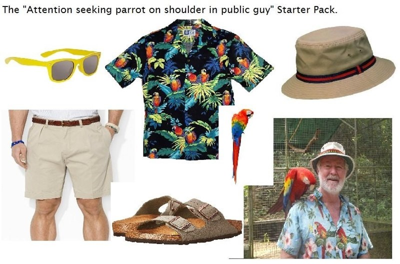 guy who has a parrot on his shoulder starter pack meme