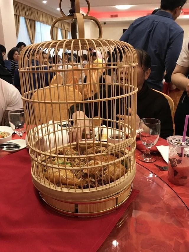 weird restaurant - Cage