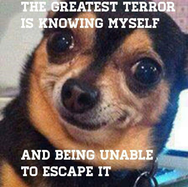 Dog - THE GREATEST TERROR IS KNOWING MYSELF AND BEING UNABLE TO ESCAPE IT