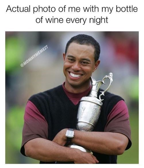 """Pic of Tiger Woods hugging a trophy with the caption, """"Actual photo of me with my bottle of wine every night"""""""