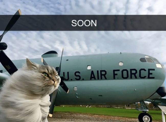 cute cat - Airplane - SOON SUS. AIR FORCE
