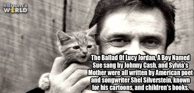 Cat - eBaum's WERLD The Ballad Of Lucy lordan ABoy Named Sue sang by Johnny Cash, and Sylvia's Mother were all written by American poet and songwriter Shel Silverstein, known for his cartoons, and children's books