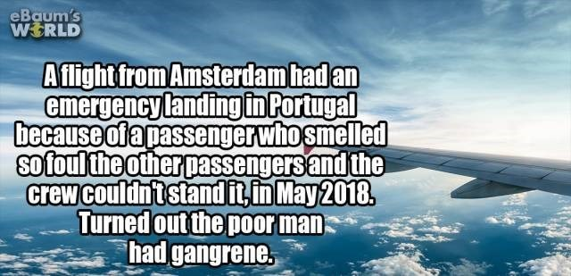 Sky - eBaum's WERLD Aflightfrom Amsterdam had an emergency landingin Portugal because ofapassenger who smelled sofoulthe other passengers and the crew couldntstand itin May 2018 Turned out the por man had gangrene