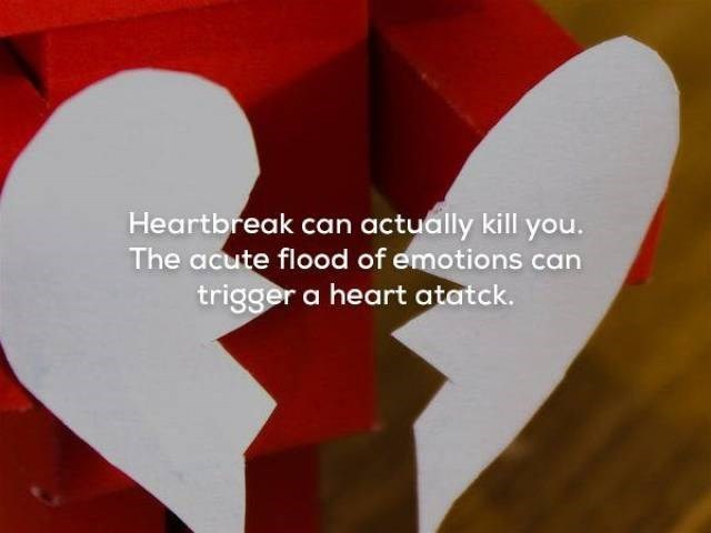 Heart - Heartbreak can actually kill you. The acute flood of emotions can trigger a heart atatck.