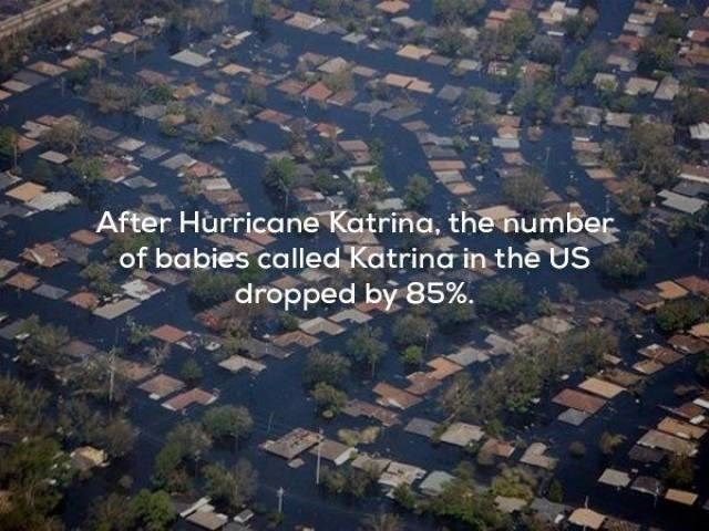 Aerial photography - After Hurricane Katrina, the number of babies called Katring in the US dropped by 85%