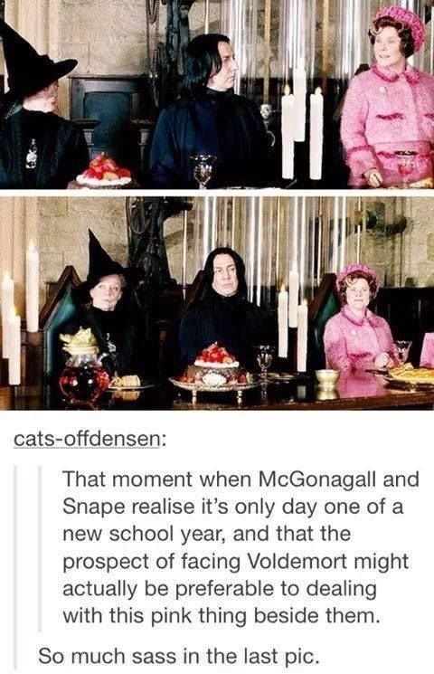 Harry Potter Tumblr meme That moment when McGonagall and Snape realise it's only day one of a new school year, and that the prospect of facing Voldemort might actually be preferable to dealing with this pink thing beside them. So much sass in the last pic.