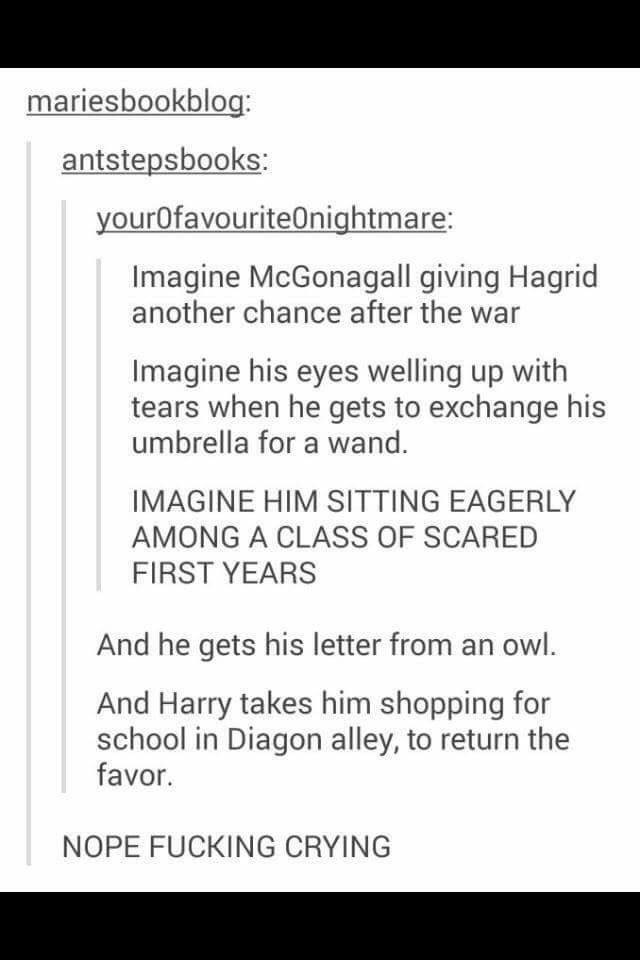 Harry Potter Tumblr meme Imagine McGonagall giving Hagrid another chance after the war Imagine his eyes welling up with tears when he gets to exchange his umbrella for a wand. IMAGINE HIM SITTING EAGERLY AMONG A CLASS OF SCARED FIRST YEARS And he gets his letter from an owl. And Harry takes him shopping for school in Diagon alley, to return the favor. NOPE FUCKING CRYING