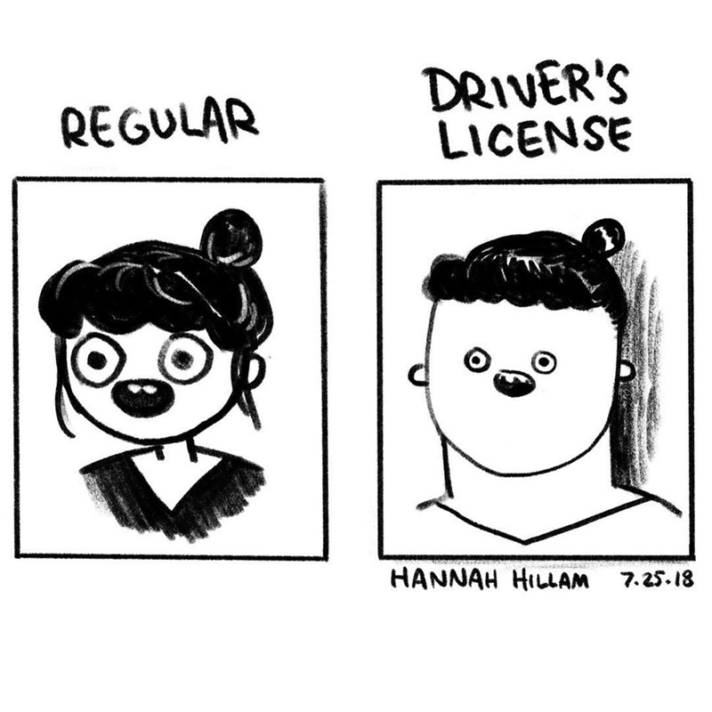Funny comic about how you look in real life vs in the photo for your drivers license.
