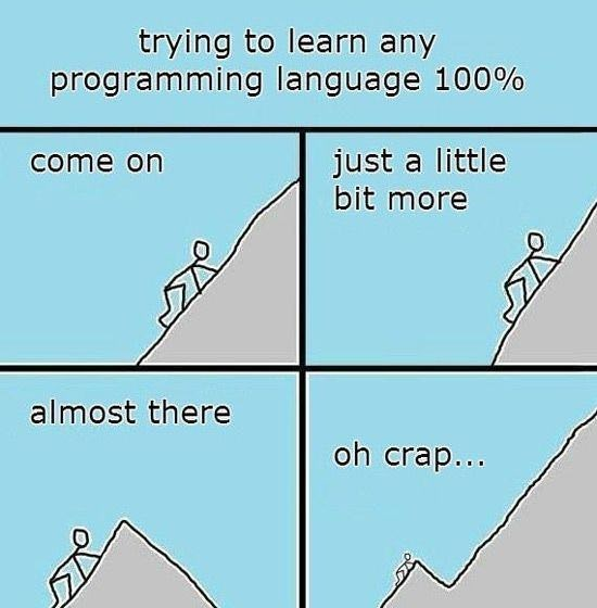 programmer meme - Text - trying to learn any programming language 100% just a little bit more come on almost there oh crap...