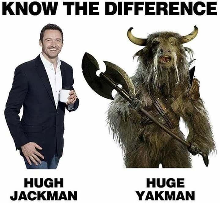 meme - Bovine - KNOW THE DIFFERENCE HUGH JACKMAN HUGE YAKMAN