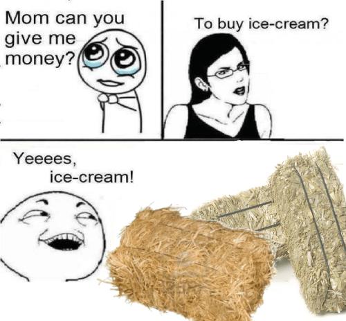 Kid buys hay with 'ice cream' money