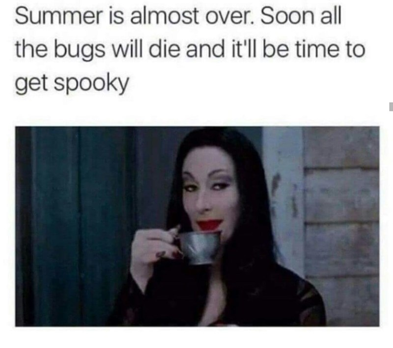 spooky meme about getting excited for Summer to be finished and Halloween to come