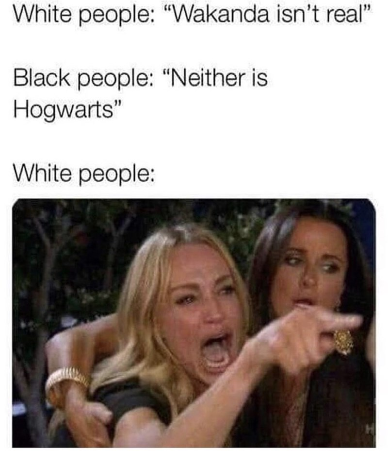 """Facial expression - White people: """"Wakanda isn't real"""" Black people: """"Neither is Hogwarts"""" White people:"""